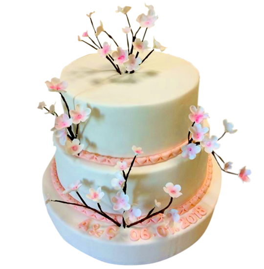 Nişan - Düğün Pastası #72 resmi